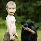 Picture of a three year old boy playing with his dog on a green field
